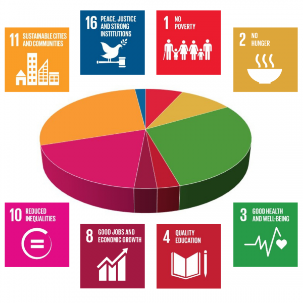 Grants awarded by UN Sustainable Development Goals